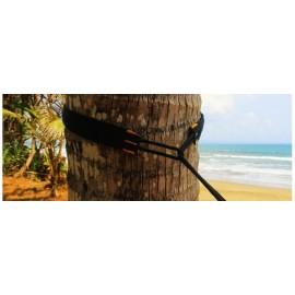 Cordes de fixation respectueuses des arbres