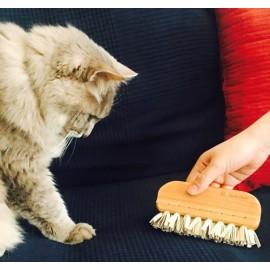 Brosse de crêpe anti-peluches