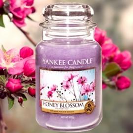 Yankee Candle Honey Blossum