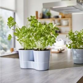 Hydro herbs Twin : pot pour plantes aromatiques
