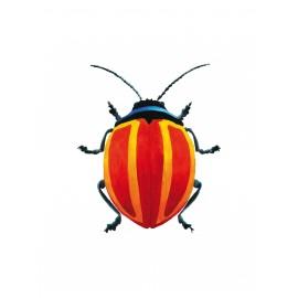 Bugs Rubi Lélène Vuylsteke