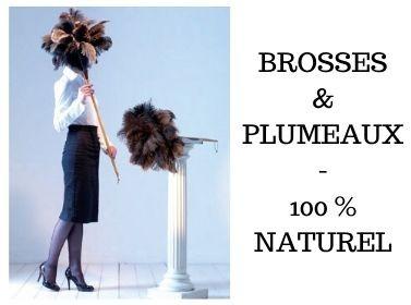 Brosses et plumeaux